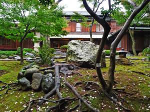 daikanyama12