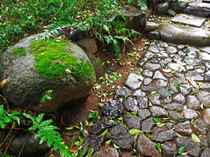 daikanyama13